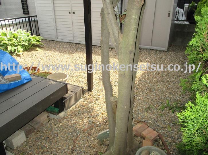 お庭の防草対策