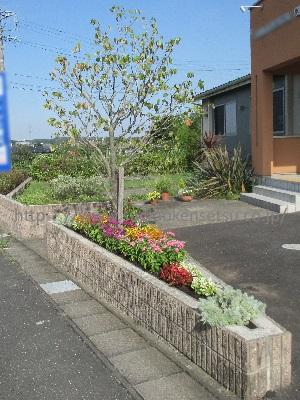 道路沿い花壇 剪定後