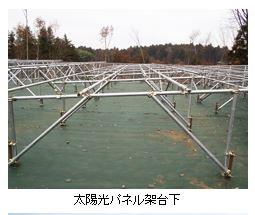 太陽光パネル架台下